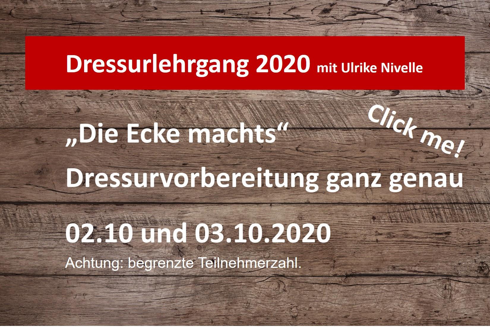 Dressurlehrgang 2020
